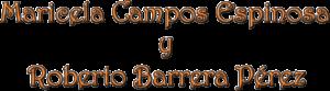 arte_campos_barrera_restauraciones